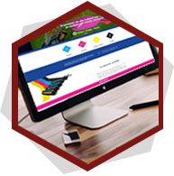 diseño web nopal creativa